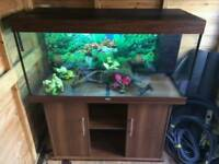 4 FT JEWEL RIO 350 LITRE FISHTANK IN DARKWOOD IN EXCELLENT CONDITION