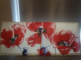 **COLLECTION ONLY*** £5 poppy canvas