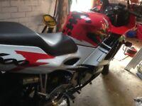 cbr 600 motorbike