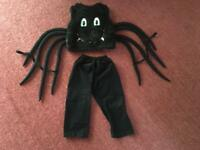 Spider Fury Dress Up Fancy Dress Costume Age 3-5