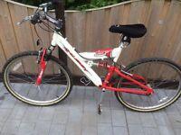 Unisex Raleigh mountain bike