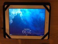 iPad 3 wifi and celular
