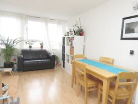 Spacious ONE DOUBLE BEDROOM apartment - Palmerston House, Battersea, London SW11