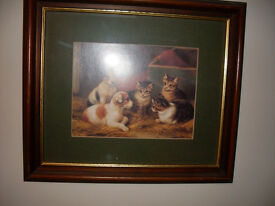 WOOD FRAMED, GLASS FRONTED PICTURE OF CATS AND DOGS
