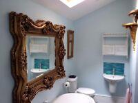 Handyman,CARPENTER,Painter,Electrician,Plumber,LOFT CONVERSION,EXTENSION,REFURBISHMENT,BASEMENT.