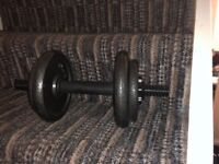Two dumbells 20kg weight excellent price only £30