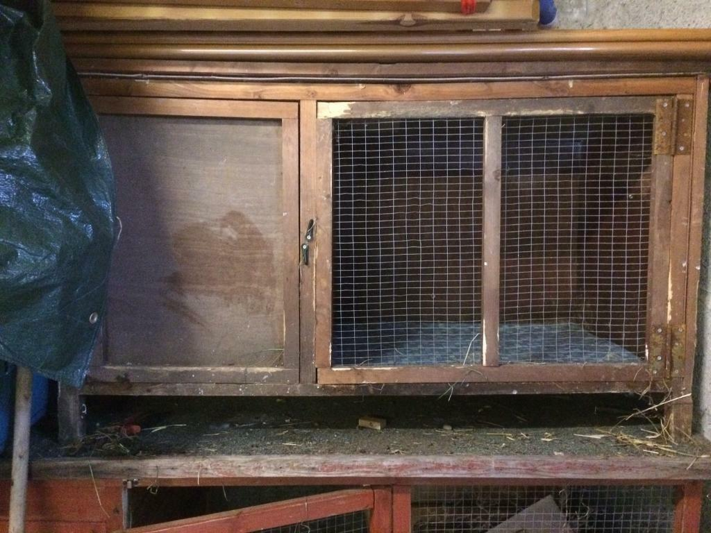 rabbit hutch / guinea pig hutch