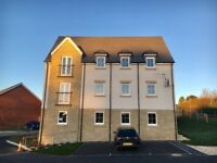 A brand new Rent to Buy Flat in Axminster