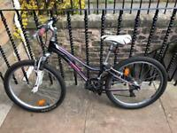 "Junior mountain bike - Trek MT 220 (24"")"