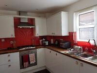 Lovely bright Double bedroom to rent 10 minutes from Edinburgh Royal Infirmary