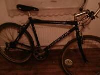 3x decent bikes