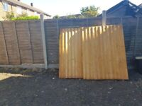 Fencing, gravel board and concrete posts