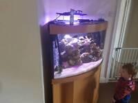 Jewel trigon 350 litre corner tank
