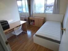 1 Beautiful Furnished Room for rent in Westmead with facilities! Westmead Parramatta Area Preview
