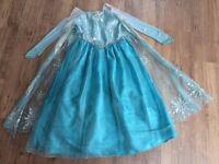 Elsa Frozen dress aged 7-8 from Disneyland Florida.