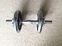 Single cast iron dumbbell 5kg weight plates