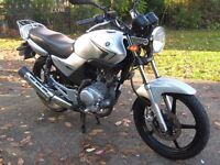YAMAHA YBR125 Excellent Condition