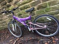Adult sized female mountain bike