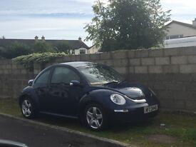 Beetle quick sale