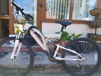 Ladies Bicycle (Mountain Bike)