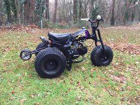 110 cc trike