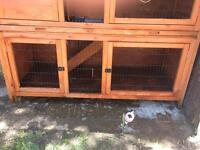 Guinea pig/rabbit cage bargain