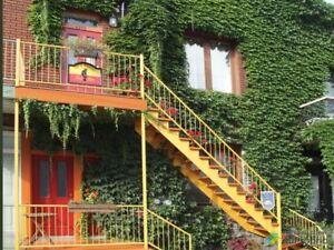 1 088 000$ - Maison 2 étages à vendre à Le Plateau-Mont-Royal