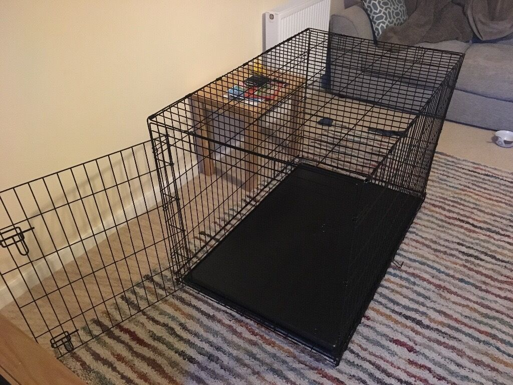 xl dog crate  in salisbury wiltshire  gumtree - xl dog crate