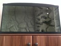 BARGAIN------Aquarium with custom made 3D background