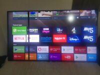SONY 65 inch 3D smart TV, Line on Screen (Screen Not Broken)