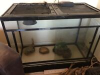 Reptile tank 1200 x 900 x 600 sold as seen buyer must collect