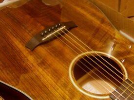 tanglewood exotic range ovenkol solid top electro acoustic