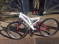 Mountain men's bike
