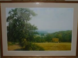 Print - Large framed print of countryside scene by David Sutton.