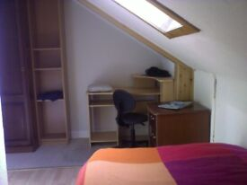 Single room available July & August only, central Stirling