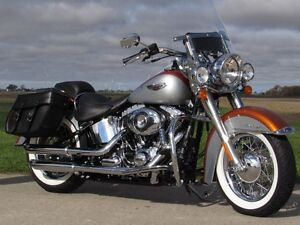 2014 harley-davidson FLSTN Softail Deluxe  103  2,900 KM and ONL London Ontario image 2