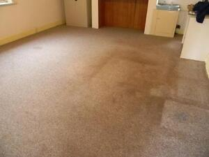 PRICELESS Carpet Upholstery Tiles & Grout Cleaning Services