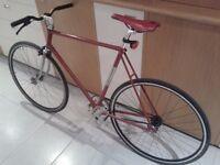 Fixie Road Bike