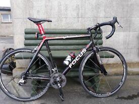 Focus izalco carbon road bike