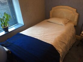 Electric Bed Single Great Condition