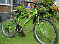 "Python Rock Junior 24"" boy's bike for sale"