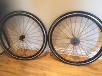 Brand new set of Felt TTR 3 Alexrims Wheels