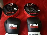 12oz pro power boxing gloves with pro power pads