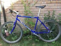 Bicycle + padlocks