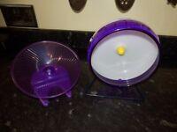 dwarf hamster purple wheels