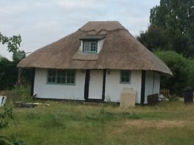 One bedroom rural cottage in exchange for domestic help