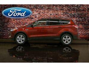 2014 Ford Escape AWD SE