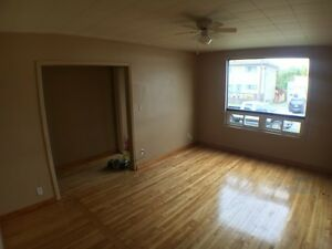 Large Two Bedroom Unit- Main Floor of House- Edmund St.