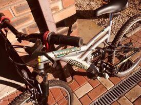Kids Bike (age 7-9ish)