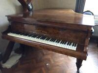 Beautiful Burr Walnut Salon Grand Piano by Ernst Kapps